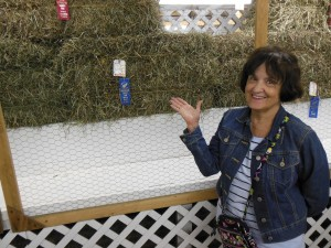 My wife thought it incredible that there was an award for the best hay. Here she points at the first place winner.
