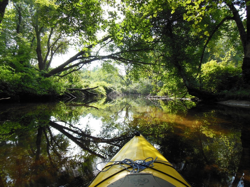 The Wood River may be 300 yards wide in some areas and less than 2 feet wide in others. The bow of the kayak is included as proof of how I got there.