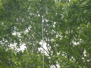 Look closely and you can see the feed point. The short end goes to the left. The long end of the wire antenna is not visible although the rope supporting the balun/center insulator can be seen pointing to the right.